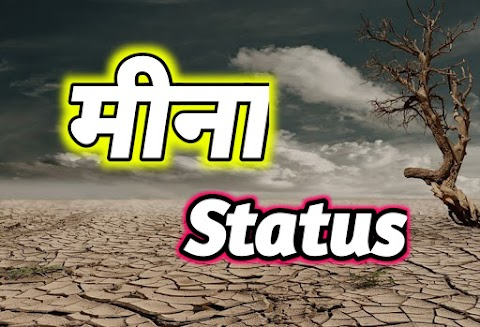 Meena Boy status in Hindi 2021   मीणा जी स्टेटस