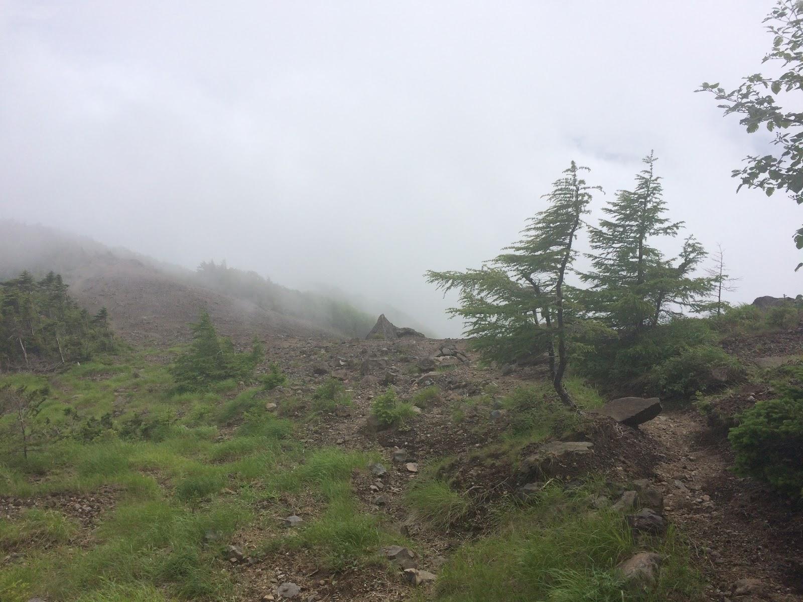 権現岳 7月