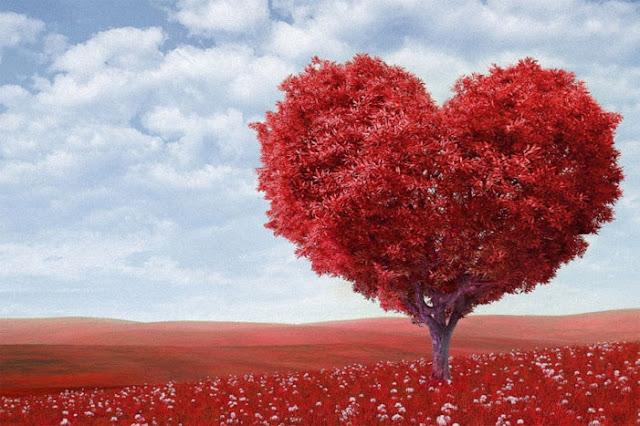 كيف تجعل شخص يحبك وهو لا يحبك - كيف تجعل شخصاً يفكر فيك - كيف تجعلين شاب يحبك 3
