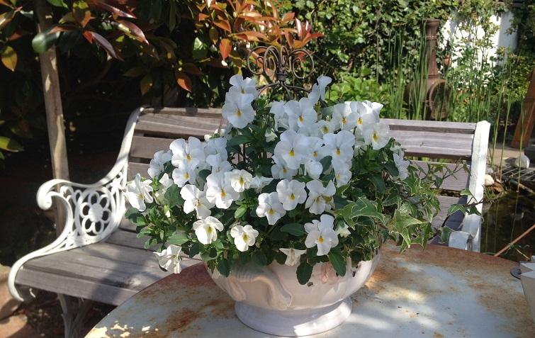 Frühling Gartendeko