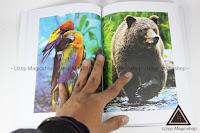 Jual alat sulap Coloring Book buku sulap