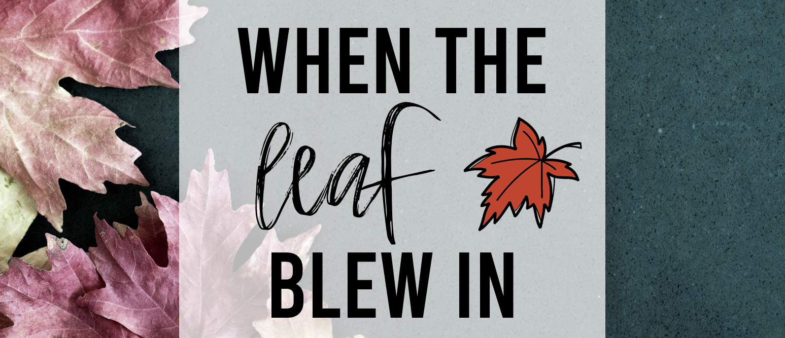 When the Leaf Blew In book study activities unit with Common Core aligned literacy companion activities for fall in Kindergarten and First Grade