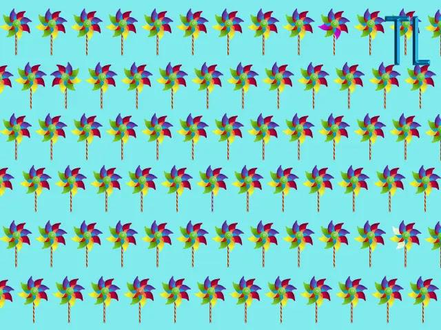 Muchos rehiletes de colores alineados en renglones sobre un fondo de color azul