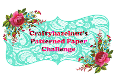 CHNS Patterned Paper Challenge