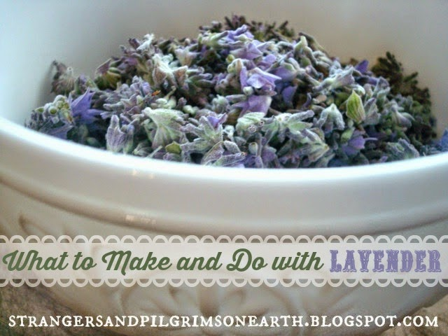 What to Make and Do with Lavender
