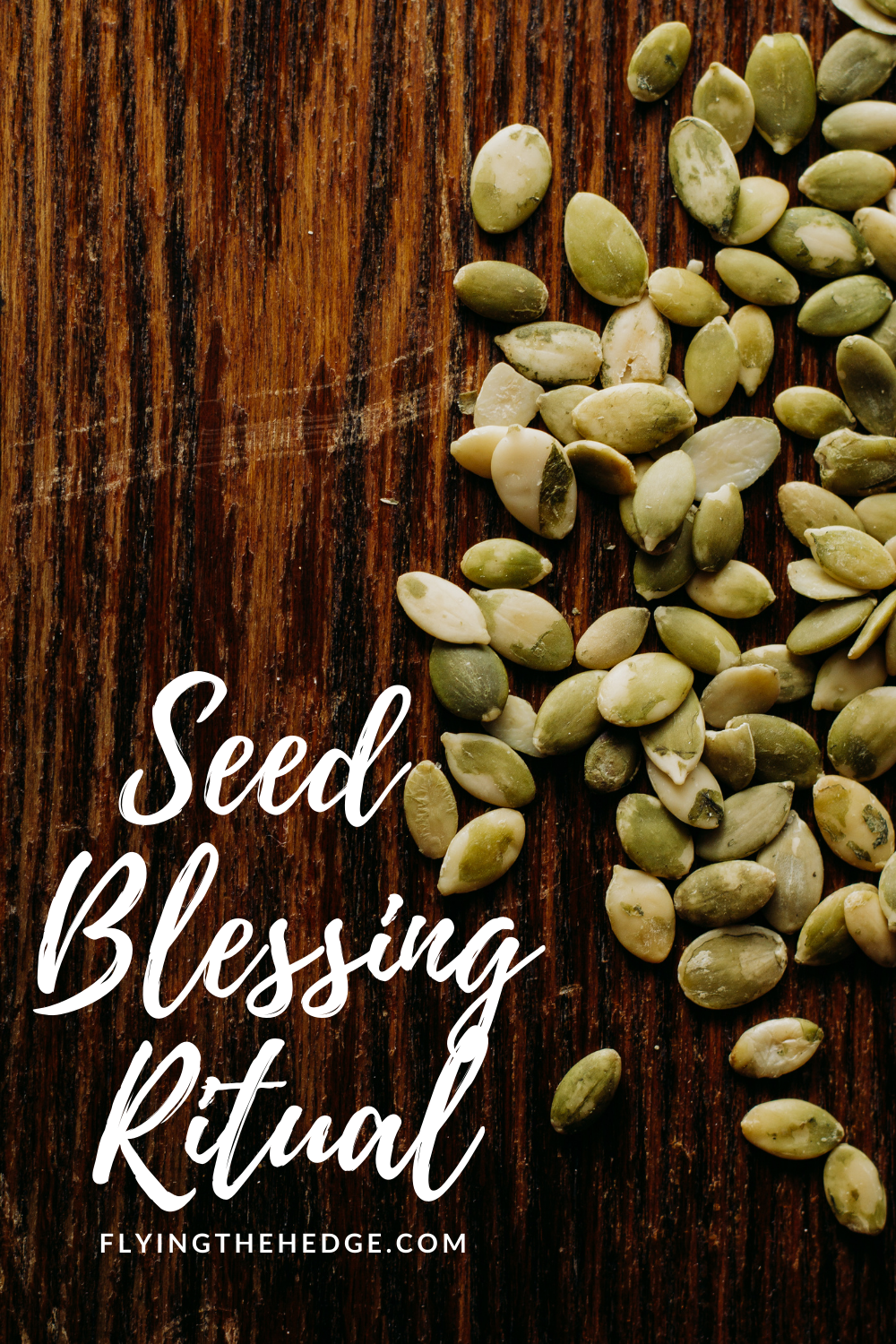 seed blessing, ritual, spell, magic, magick, witchcraft, witch, witchy, occult, pagan, neopagan, greenwitch, hedgewitch, green witch, hedge witch, wicca, wiccan