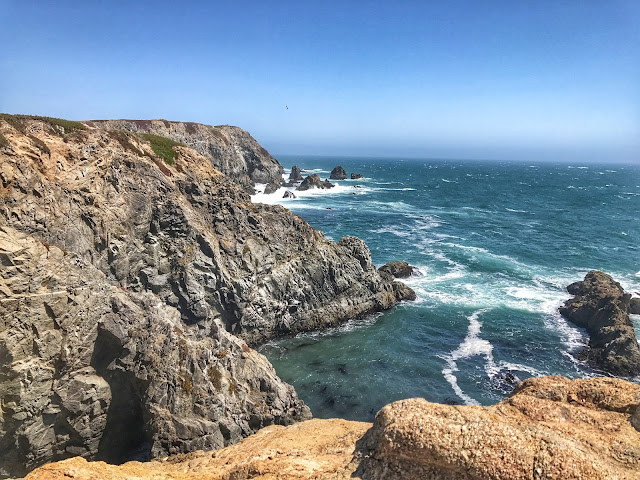 Ocean bluffs at Bodega Head trail