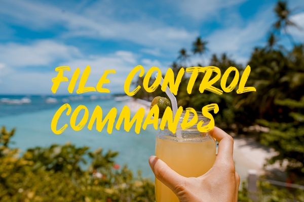file control commands
