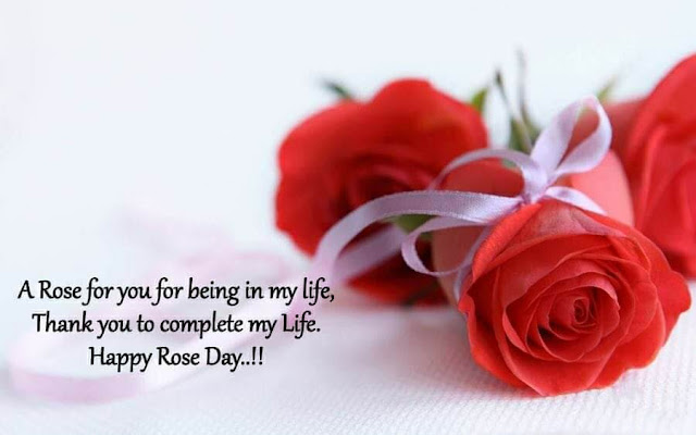 rose day images with quotes for husband, rose day quotes 2020, rose day quotes for my husband, happy rose day quotes 2019, rose day quotes for hubby, quotes on rose day for girlfriend, quotes on rose day for husband, rose day quotes for bf, rose day quotes for long distance relationship, rose day quotes for husband in english, rose day quotes for singles