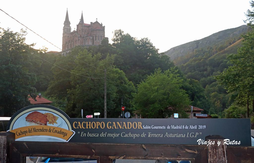 Vistas desde el Merendero de Covadonga, (Asturias)