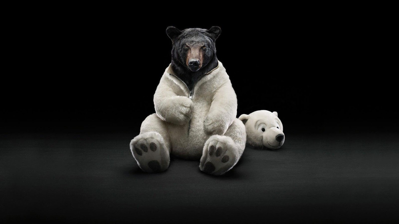 Funny bear Wallpapers dark theme