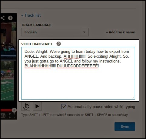 What a video transcription looks like, before the sync