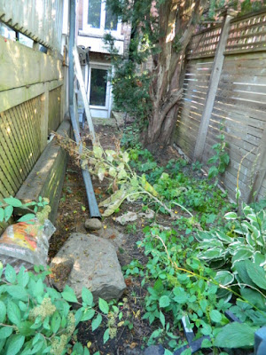 Toronto High Park Back Yard Fall Cleanup Before by Paul Jung Gardening Services--a Toronto Organic Gardener