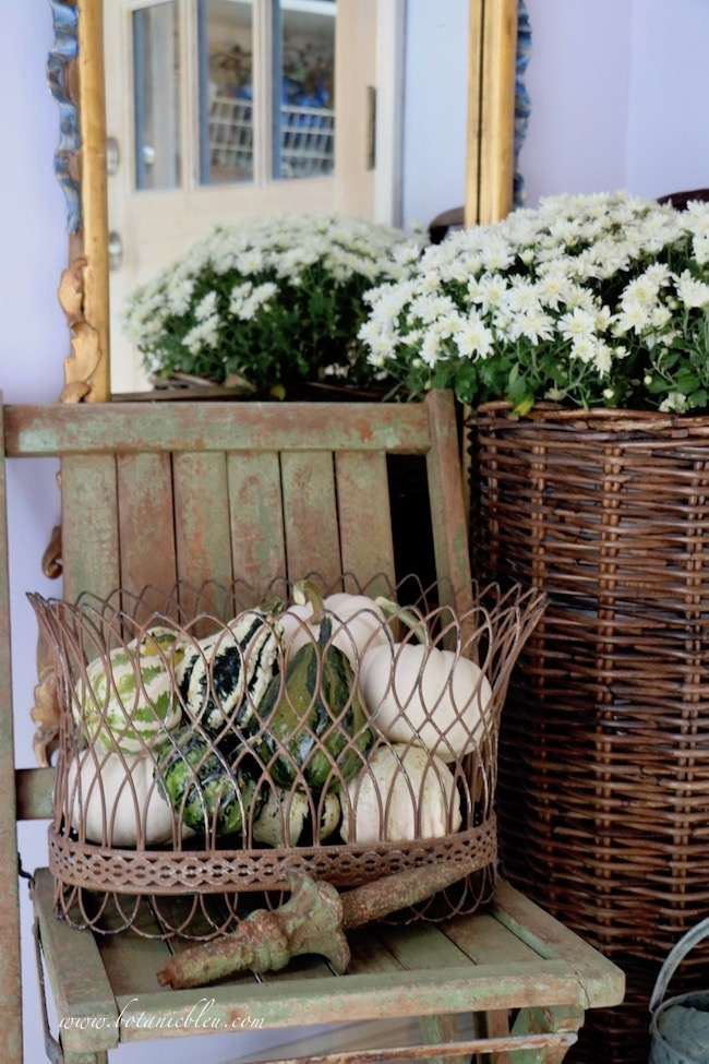 French Country rustic fall entry mirror doubles the visual size of white mum arrangement in a wheeled French country flower basket