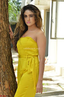 Sony Charishta In a Yellow Jump Suit Sleevelss Deep neck Beautiful Actress ~  Exclusive 010.jpg