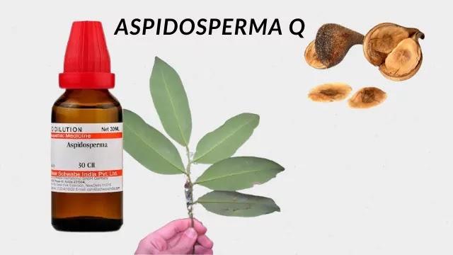 ASPIDOSPERMA Q 30