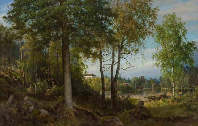 kuvassa metsäinen järvimaisema