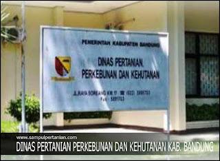 Alamat Dinas Pertanian Perkebunan dan Kehutanan Kabupaten Bandung