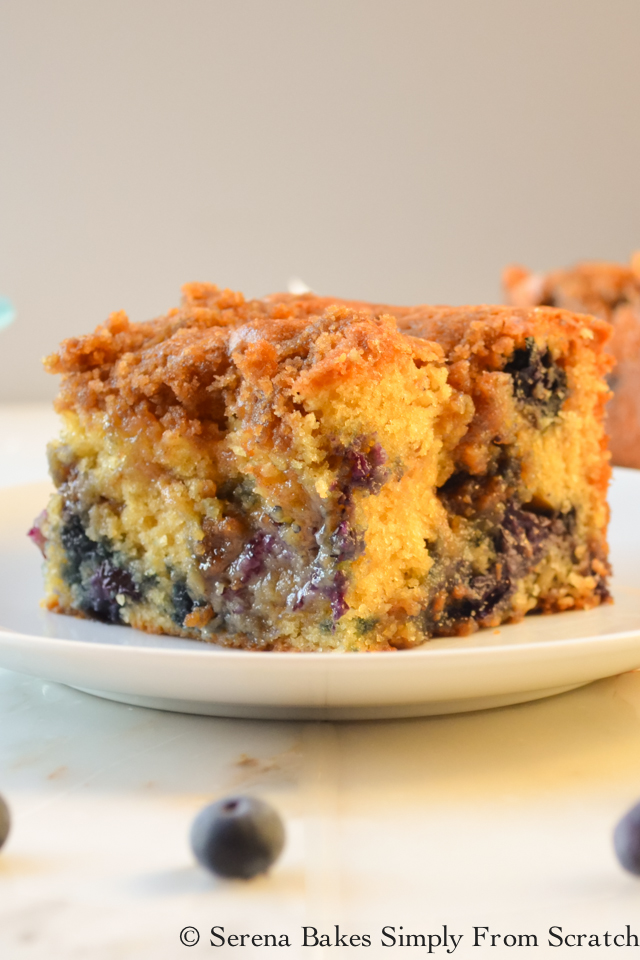Top 10 Recipes Of 2016 Blueberry Cinnamon Swirl Cheesecake on serenabakessimplyfromscratch.com