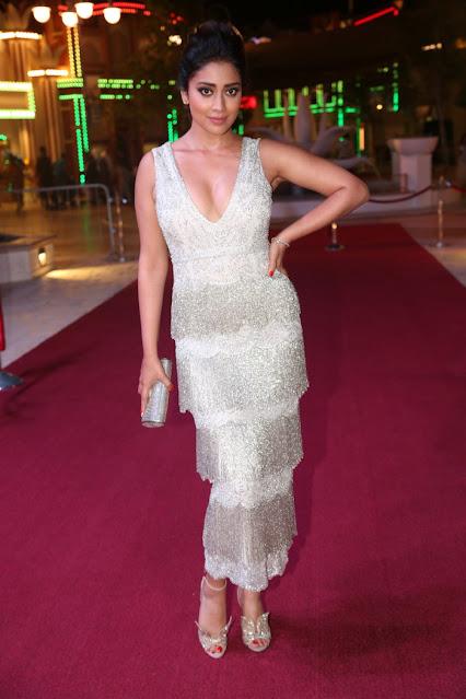 South Indian Actress Shriya Saran Photos at Siima Awards Actress Trend