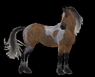 أفضل الصور النادرة للخيول Arab%2Band%2BEuropean%2Bhorses%2B%25281%2529