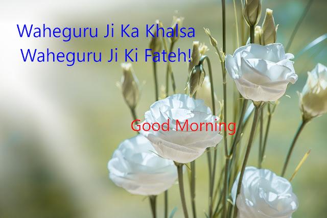 Waheguru Ji Ka Khalsa Waheguru Ji Ki Fatehi Good Morning.