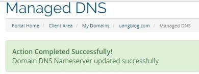Update NameServer Sukses