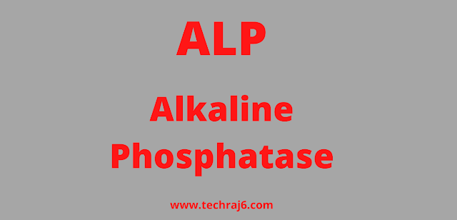 ALP full form, What is the full form of ALP