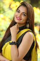 Cute Actress Ashwini in Yellow Saree Exclusive  010.JPG