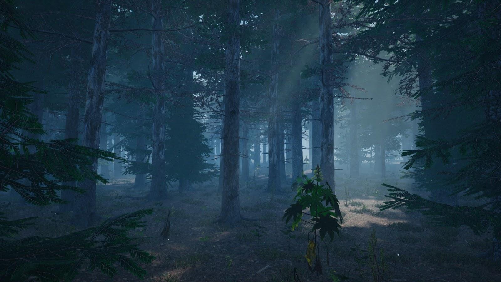 mushroom-picker-simulator-pc-screenshot-03