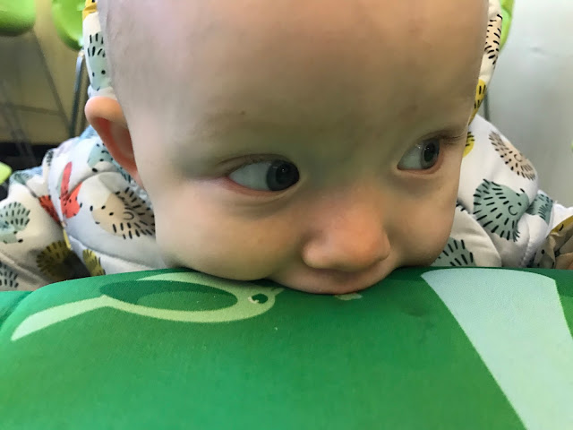 A close up of a baby in a hedgehog coat sucking the bibetta placemat