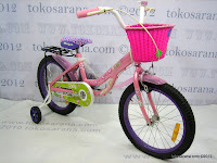 3 Special Edition 18 Inch Wimcycle Mini Jolly with Basket, Bag and Carrier