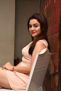 Ragini Nandwani At Siddhartha Movie Success Meet (14).JPG