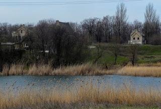 Чунишино. Пруд на ручье Солёненьком