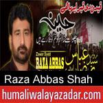 https://www.humaliwalayazadar.com/2012/11/raza-abbas-shah-nohay-2001-2013.html