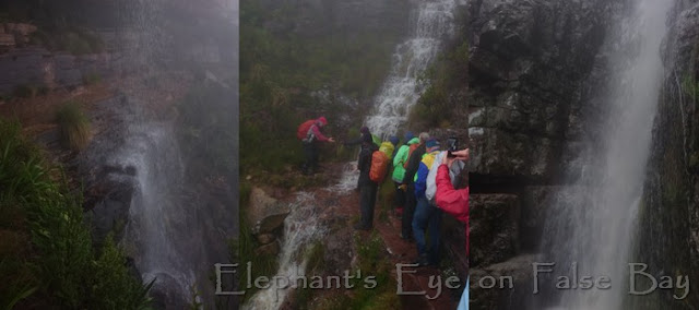 Table Mountain waterfalls in August with Sir Walter Raleigh on duty
