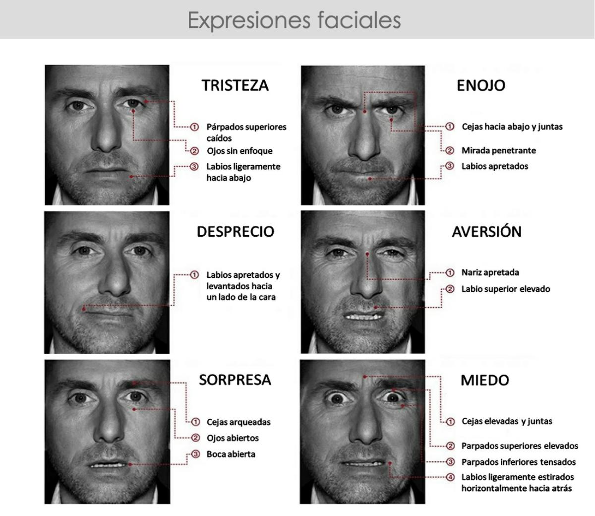 Learn micro expressions pdf files