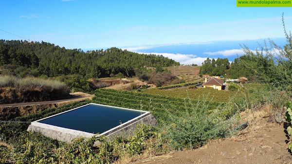 La Consejería forma en agricultura de precisión para mejorar la capacidad vitícola de Canaria