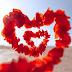 कैसे पता करें कि आप किसी से सच्चा प्यार करते हैं या आकर्षण है?