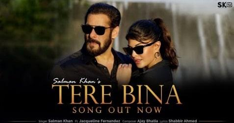 Tere Bina Lyrics in Hindi and English, Salman Khan, Lyrics in Hindi, Lyrics in English, Hindi Lyrics, Hindi