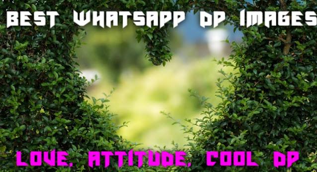 cool whatsapp dp