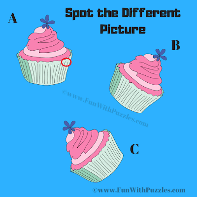 Answer of Odd One Out Mince Pie Picture Puzzle