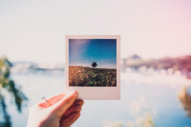 【Blogger】優化圖片設定,讓網頁 SEO 神進步 (網站、部落格都適用) - 圖片設定讓網站曝光機會更多
