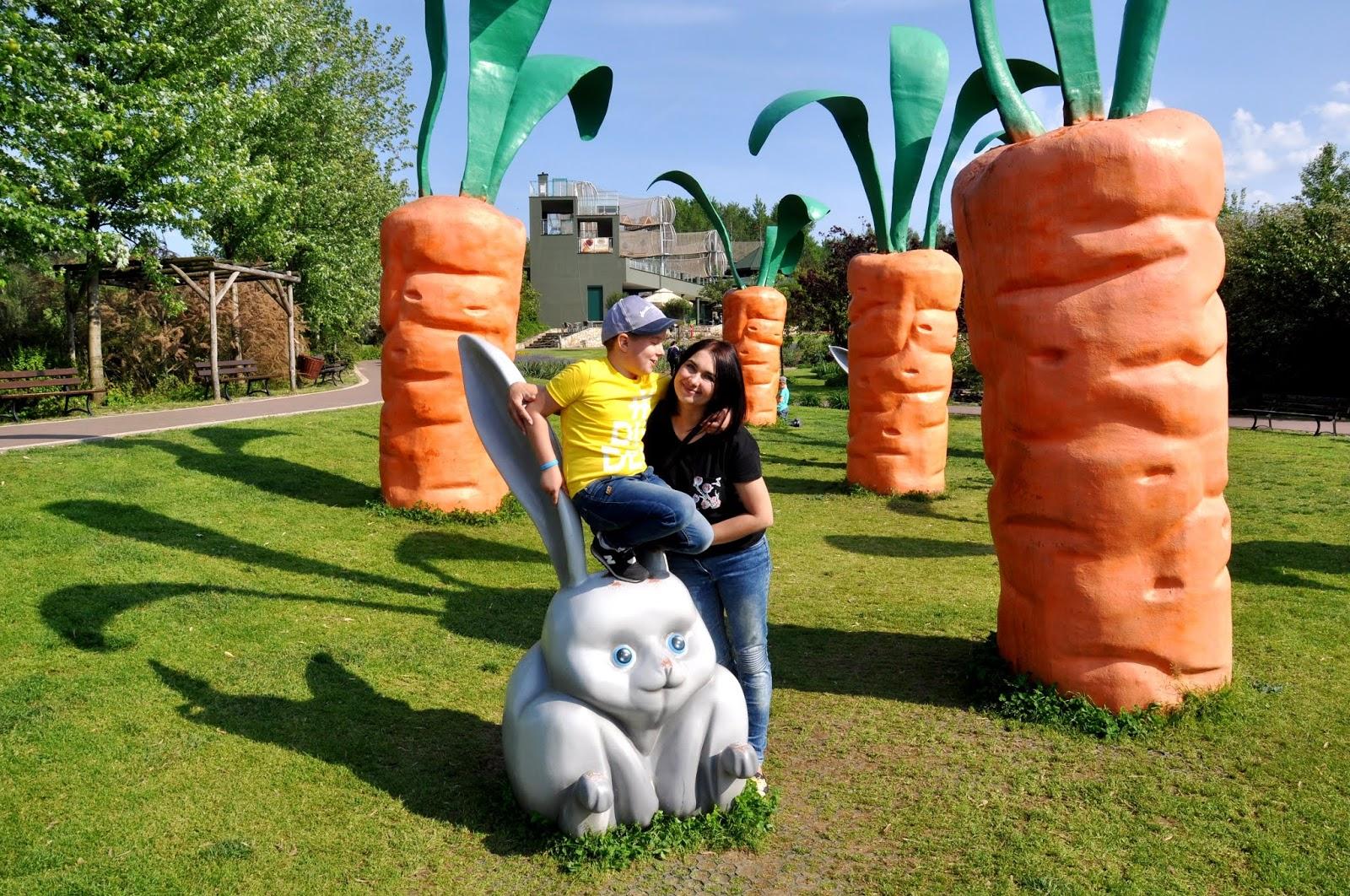 Pomysł na weekend - Magiczne Ogrody koło Janowca