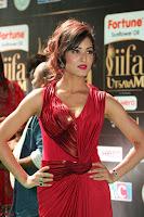 Videesha in Spicy Floor Length Red Sleeveless Gown at IIFA Utsavam Awards 2017  Day 2  Exclusive 15.JPG