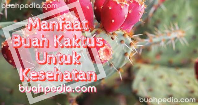 Manfaat buah kaktus untuk kesehatan