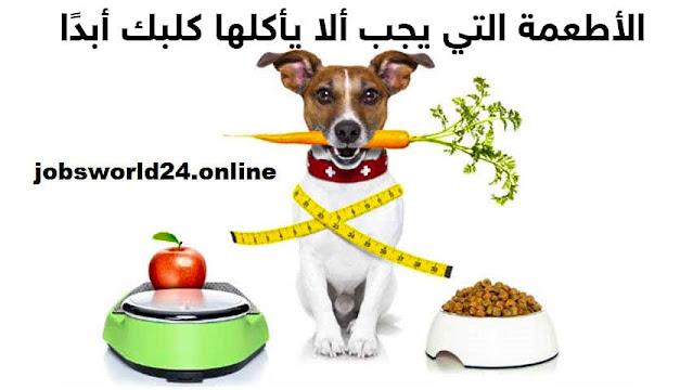 الأطعمة التي يجب ألا يأكلها كلبك أبدًا