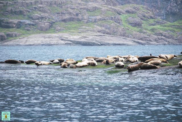 Loch Courisk, isla de Skye (Escocia)