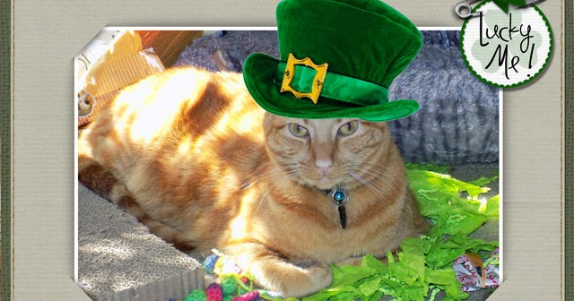 Happy St. Patrick's Day Today!