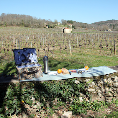 Picnicking  in the vineyard.